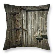 Old Weathered Barn Door Throw Pillow