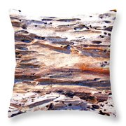 Old Weathered Log On The Sea Shore Throw Pillow
