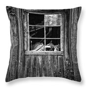 Old Window Throw Pillow by Garry Gay