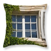 Old Window With Creeper. Throw Pillow