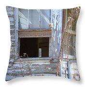 Old Windows Overlooking New World Throw Pillow