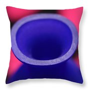 Old Winy Bottle Throw Pillow