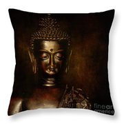 Old Wisdom... Throw Pillow