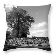 Old Woman Creek - Black And White Throw Pillow