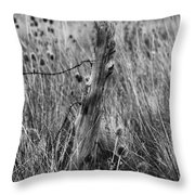 Old Wooden Fence Post In A Field Throw Pillow