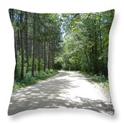 Old World Path Throw Pillow