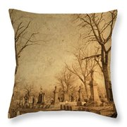 Old World Vision Throw Pillow