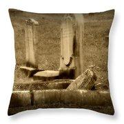 Olde Graves Throw Pillow
