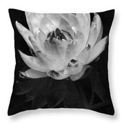 Older And Beautiful Bw Throw Pillow