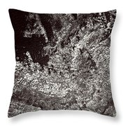 Older Than Humanity - II Throw Pillow