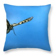 Oldworld Swallowtail Papilio Machaon Throw Pillow