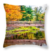 Ole Bull State Park Paint Throw Pillow