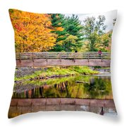 Ole Bull State Park Throw Pillow