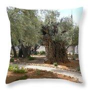 Olive Garden Throw Pillow