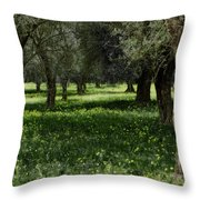 Olive Grove Color Italy Throw Pillow