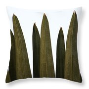 Olive Palm Throw Pillow