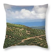 Olive Trees In A Field, Ubeda, Jaen Throw Pillow