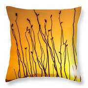 Oliver Lee Sunset Throw Pillow