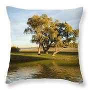 Oliver Solitude Throw Pillow