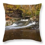 Olmstead Falls Throw Pillow