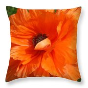 Olympia Orange Poppy Throw Pillow