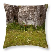 Olympia Ruins And Wild Flowers   #9821 Throw Pillow