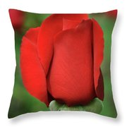 Olympiad Hybrid  2 Throw Pillow