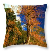 Olympic Fall Throw Pillow