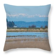 Olympic View Throw Pillow
