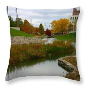 Omaha In Color Throw Pillow