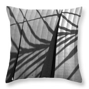 Ombres Throw Pillow