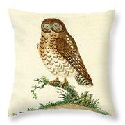 Ominous Owl Throw Pillow
