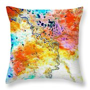 Omoloy River Tributaries Throw Pillow