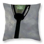On A Light Post Throw Pillow