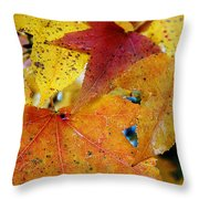 On A Nice Autumn Day Throw Pillow