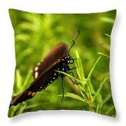 On A Rainy Day Throw Pillow
