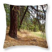 On A Trail From The Past To The Future Throw Pillow