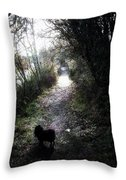 On A Walk In The Park Throw Pillow