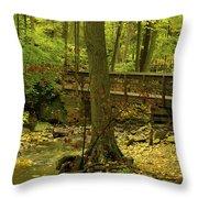 On An Autumn Walk Throw Pillow