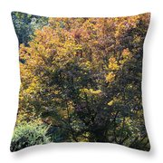 On An Autumn's Afternoon Throw Pillow