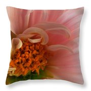On Being A Dahlia Throw Pillow by Kathy Yates