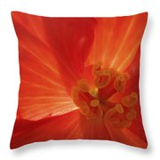 On Fire For You Throw Pillow
