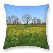 On Golden Field Throw Pillow
