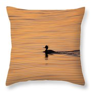 On Painted Waters Throw Pillow