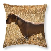 On Point Throw Pillow