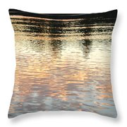 On Shimmering Pond Throw Pillow