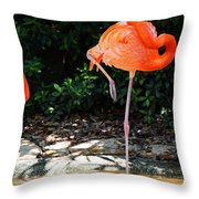 On Stilts Throw Pillow