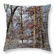 On Such A Winter's Day Throw Pillow