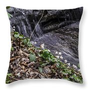 On The Banks Of The Rapids Throw Pillow