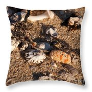 On The Beach 04 Throw Pillow